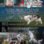 Ultra High Voltage Sonic Workaholic