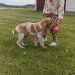 S novou paničkou a novým balónkem