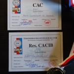 CAC, res. CACIB (MVP Praha 2. 5. 2015)