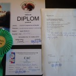 Posudek a diplom z klubovky 10. 5. 2015