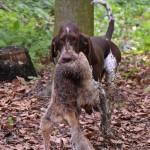 Simon s liškou