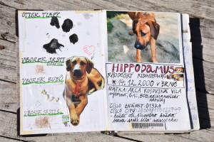 Hippův deník úvodní dvojstrana