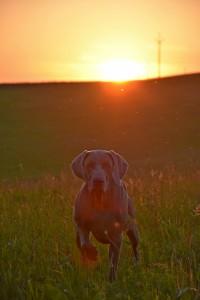 Západ slunce ...